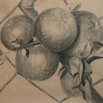 Äpfel (Kohle), ungerahmt