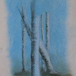 Birkenstämme (Pastellkreide), ungerahmt