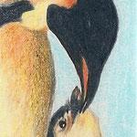 Pinguine (Farbstift), verkauft
