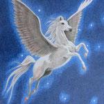Pegasus (Farbstift), A4, ungerahmt