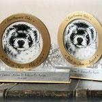I premi Best in Show creati in esclusiva per Furettomania nell'edizione di Piacenza 2016