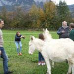 Arbeitstreffen in Goldau, Schweiz 2006. von li. nach re.: Istvan Sandor, Dr. Dagmar Schratter, Susi Altmann, Prof. Altmann, Alois Gangl