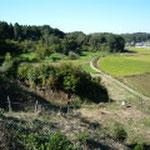 東山から見る東光寺ビョーの全景