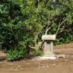 伊豆国三島神社の分霊