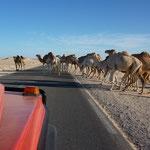 Rechts vor Links > in Mauretanien