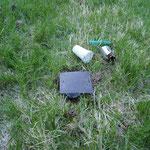Käferfallen-Untersuchung