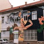 Fassade Tüchler