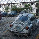 Lustig, die haben einen VW Käfer...
