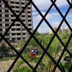 ... und der grandiose Blick aus meinem Fenster...