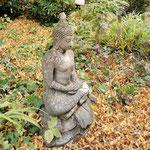 Feng Shui Garten Badenweiler Balance Vitalhotel