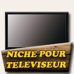 Niche pour téléviseur