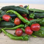 完全無農薬のオーガニック野菜