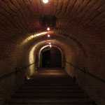 In the afternoon we will visit the nicest places or the deepest wine cellars of the Weinviertel.