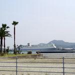 東京と門司を結んでいます、津田港に停泊中の東九オーシャンフェリー