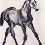 """Foal"" charcoal and acrylic on paper, sold"