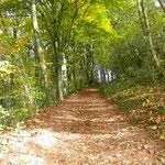 Wanderung auf den Staffelberg