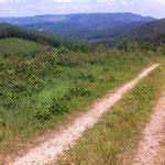 Une invitation à la rando, au trail running, au VTT...?