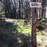 Sommet du Houdimont, 817 m