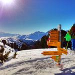 Schneeschuhwanderung im Aletschwald Unesco Weltnaturerbe