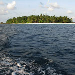 Insel in der sonne Fihalhohi Malediven
