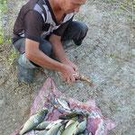 Wie versprochen kommt er nach dem morgendlichen Fischfang um 7:00 Uhr zu uns und bringt uns unserer Abendessen