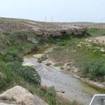 Und wieder verblüfft diese schon sandige Steppe mit einem Wasserlauf