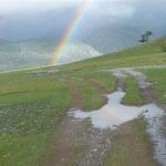Nationalpark - auch Regen ist schön