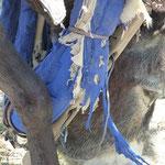 Halfter und Zaumzeug werden irgendwie zusammengebunden mit Leder und Stoff
