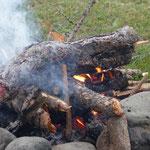 wir finden das Holz am Wegrand - eher selten, dass Holz so herumliegt - Holz, vor allem Brennholz ist hier Mangelware