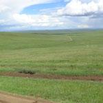 wieder so weit das Land - es fasziniert mich immer wieder diese Unendlichkeit der Steppe und des Graslands