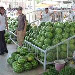 Die besten Melonen im Orient