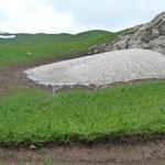 Gras und Gletscher beieinander