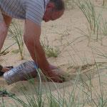 wie versprochen sammle ich Sand für die Daheimgebliebenen