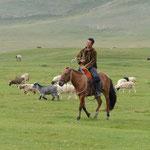 Viehzüchter
