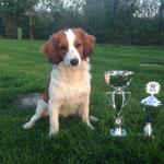 Bramsche 2015 Erster mit einem vielversprechend und bester Junghund