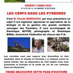 Les cerfs dans les Pyrénées - Claude Berducou