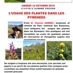 L'usage des plantes dans les Pyrénées - Charles Gerbet