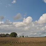 Aardappelveld bij Rottum
