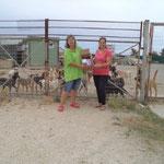 2015 eine Weitere Übergabe  von Medikamenten an das Tierheim in Alexandroupolis