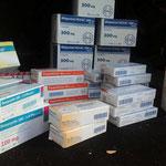 2015 Medikamente für das Tierheim in Alexandroupolis