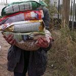 2014  Hilfe die ankommt - Verteilung der Spenden für die Straßenhunde