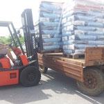 2016  mit Spendengeldern konnten wir 3t Futter für die Straßenhunde in Xanthi kaufen