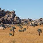 Landschap zuidelijk Madagaskar