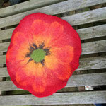 Anemone: Flower Power