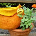 Orange: Herbstzeitrose