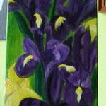 iris acrylique