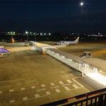 名古屋小牧空港は、ボーディングブリッジじゃなくて、フィンガーコンコースというらしいです。階段を上がらなくていい、小型機用の新しい空港ですね。