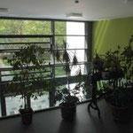 Empore und Bürobereich