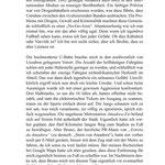 "Kapitel ""Kapverdischer Reggae"" Seite 37"