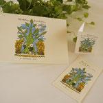 猫夫婦 木と祝福の花